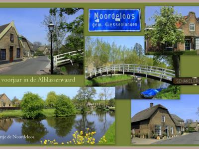 Noordeloos is een dorp in de provincie Zuid-Holland, in de streek Alblasserwaard, gem. Molenlanden. Het was een zelfstandige gem. t/m 1985. In 1986 over naar gem. Giessenlanden, in 2019 over naar gem. Molenlanden. (© Jan Dijkstra, Houten)