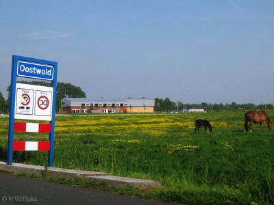 Oostwold is een dorp in de provincie Groningen, in de streek en gemeente Westerkwartier. T/m 2018 gemeente Leek.