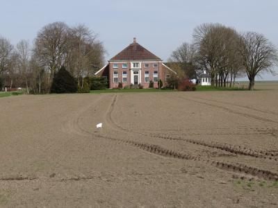 Boerderij in de Reiderwolderpolder (© Harry Perton/https://groninganus.wordpress.com)