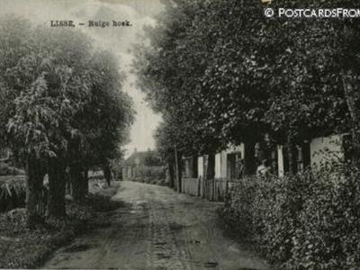 De buurtschap Ruigenhoek ligt niet in Lisse, maar bij Lisse, NW ervan. De buurtschap valt namelijk grotendeels onder het dorp De Zilk en voor een klein deel onder het dorp Noordwijkerhout. Ansichtkaart uit naar schatting ca. 1910.