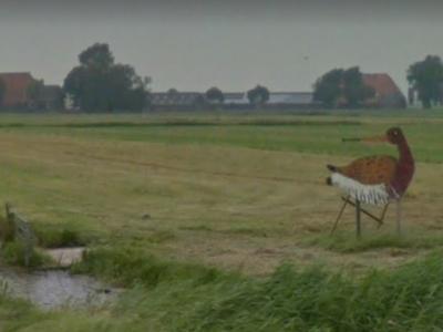 Bote en Astrid de Boer zetten zich met hun melkveebedrijf op Rytseterp 1 niet alleen in voor hun melkvee, maar nadrukkelijk ook voor de weidevogels. Vandaar de grutto en het bordje 'Bote's Paradys' in hun weiland aan de Jousterperweg (N359). (©Google Maps