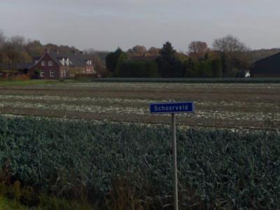 Schoorveld is een buurtschap in de provincie Limburg, gemeente Peel en Maas. T/m 2009 gemeente Maasbree. De buurtschap heeft geen plaatsnaamborden, zodat je slechts aan de gelijknamige straatnaambordjes kunt zien dat je er bent aangekomen.