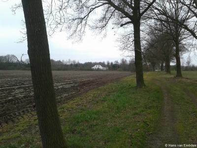 Dit is geen Drents landschap maar een Trents landschap, oftewel een landschap in de buurtschap Trent, met in de verte een boerderij aan de Bovenste Trent.
