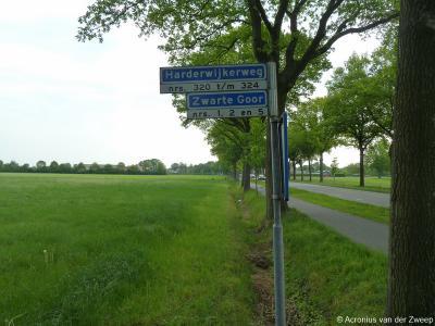 Zwarte Goor is een buurtschap in de provincie Gelderland, in de streek Veluwe, gemeente Nunspeet. T/m 1971 gemeente Ermelo. De buurtschap ligt aan de gelijknamige weg. Ook de panden Harderwijkerweg 320 t/m 324 vallen er nog onder.